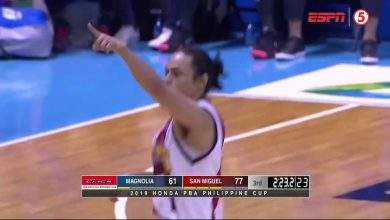 Photo of WATCH: Terrence Romeo Highlights [San Miguel vs Magnolia   February 10, 2019]